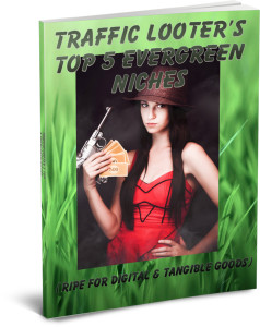 traffic_looter_5niches_ecover