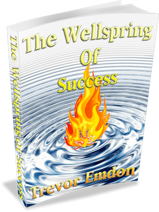 wellspring of success 2017 ecover_ S